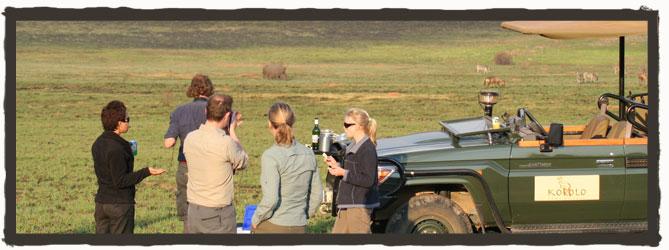 Safaris-Welgevonden
